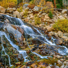 Horseshoe Falls by Jennifer McWhirt - Nature Up Close Water ( photographybyjenmcwhirt.com, autumn, waterfall, fall, colorado, horseshoe falls, nature up close, rocky mountain national park )
