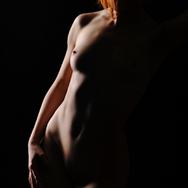 Shadows by Vineet Johri - Nudes & Boudoir Artistic Nude ( vkumar, workshop, art nude, anita de bauch, studio lighting workshop, nude photography in london )