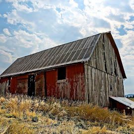 Barn in Rathdrum, Idaho by Barbara Brock - Buildings & Architecture Decaying & Abandoned ( cloudy sky, red barn, barn, abandoned barn, old barn, barn in the field )