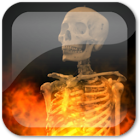 Skull Fire Live Wallpaper icon
