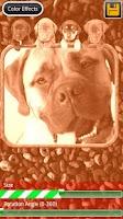 Screenshot of Dog Frames