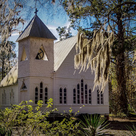 Church in the woods. by Ron Daige - Buildings & Architecture Places of Worship (  )
