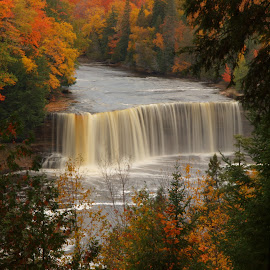 Tahquamenon Falls Color by Don Bruechert - Landscapes Waterscapes ( tahquamenon falls, waterfalls, nature, fall colors, michigan state parks, pictured rocks, upper michigan,  )