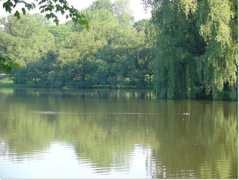 A Lazy Sunday on the Avon River