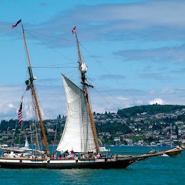 Pacific Grace by Pete Bobb - Transportation Boats ( pacific grace, puget sound, tall ships, sail, commencement bay )