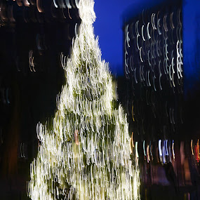 Merry Christmas by VAM Photography - Abstract Light Painting ( abstract, christmas lights, christmas tree, nyc, light )
