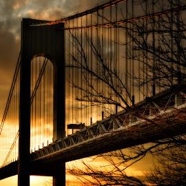 Verrazzano Sunset by Linda Karlin - Buildings & Architecture Bridges & Suspended Structures ( nyc, architecture, bridges, landscape )