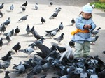 Kid and Pigeons at the Dashchoilin Monastery