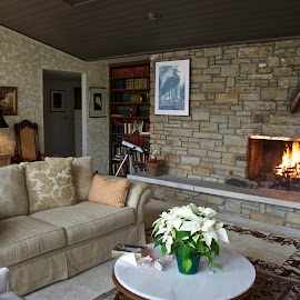 Living Room by Hugh Hazelrigg - Buildings & Architecture Homes ( holiday, interior, home, indiana, bloomington, cedar crest, architecture, party )