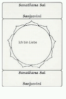 Screenshot of Sanjeevini