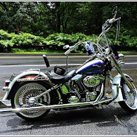 Biker Babe by Kathy Hancock - Transportation Motorcycles ( bike, chrome, single bike, helmet, purple bike )