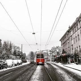 Wien tram by Marko Dragović - City,  Street & Park  Street Scenes