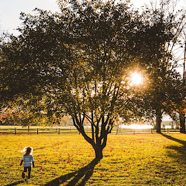 Running Wild by Jess Anderson - Babies & Children Children Candids ( familyphotographer, nx30, 2014, mchenryphotography.com, familyphotography, samsung, imagelogger, photography, fallcolors, family, fall, ditchthedslr, jessica anderson, color, colorful, nature )