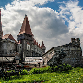 Corvin Castle by Toma Teodor - Buildings & Architecture Public & Historical ( hunedoara, corvin, romania, castle )
