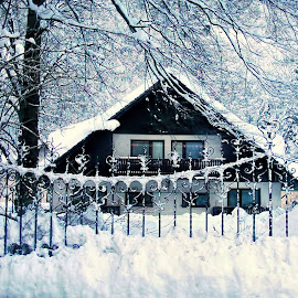by Stane Gortnar - Buildings & Architecture Homes ( snow, winter, cold )