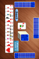 Screenshot of Rummy Splash