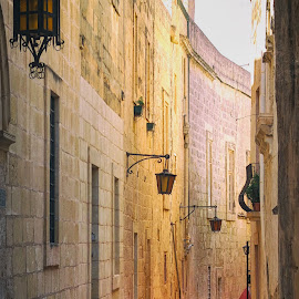 mdina by Jelena Brankovic - Buildings & Architecture Public & Historical ( malta, mdina )