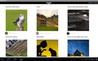 Screenshot of 500px Land