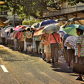 Sunny Procession by Erico Claudio - City,  Street & Park  Street Scenes ( procession, umbrellas, san juan city, christ the king feast day, philippines )