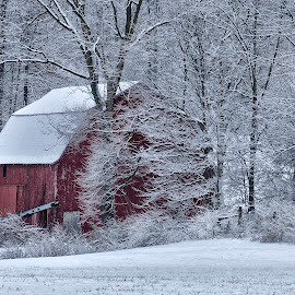 Red Barn by Christine May - Landscapes Prairies, Meadows & Fields ( farm, field, indiana, winter, nature, snow, landscape, photo, photography, fields )