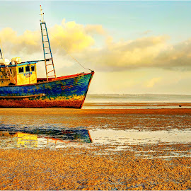 DINA by Maricha Knight van Heerden - Transportation Boats ( stranded, inhambane, prawn, low tide, waitng for the tide to come, mozambique, prawn boat, beach, africa, fishing vessel )