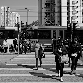 ORDERLY eLdeRLy CRossinG by Daniel Legendarymagic - People Street & Candids ( hongkong, tinsuiwai, street, bw, hk, crisscross, digicore, road, shadows, elder, blackandwhite, dcp, order, legendarymagic, cross )