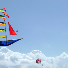 P1090931 by Andrey Acorbusie - Artistic Objects Toys ( acorbusie, toy, parasailing, kite, objects )