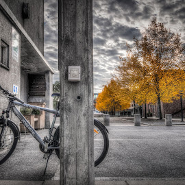 Askim, Norway 093 by IP Maesstro - Transportation Bicycles ( clouds, sky, fall, trees, transportation, maesstro, askim, norway, bicycle, color, colorful, nature )