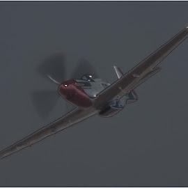 Mustang by Dirk Luus - Digital Art Things ( mustang, transport, fly, aeropllane, war )