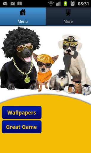 Pet Booth+ Wallpaper