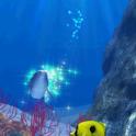 Dolphin Coral icon