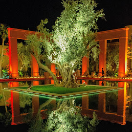 reflection by Younes Benaddou - Buildings & Architecture Other Exteriors ( #hotel #light #tree #unique #water )