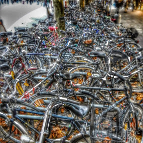 A Bunch of Bicycles in the City Center by Nat Bolfan-Stosic - Transportation Bicycles ( center, bicycles, town, bunch, city )