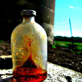Antique in Amber by Betty Doerksen - Artistic Objects Glass ( liquid, old barn find, amber, jar, glass, bottle, antique )