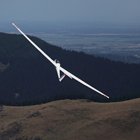 the pull up by Geoff Soper - Landscapes Mountains & Hills ( canterbury, sailplane, glider, new zealand )