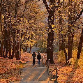 by Vida Jankaitiene - City,  Street & Park  City Parks (  )