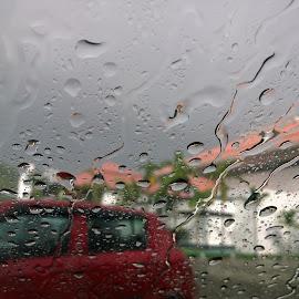In rain by Ananthan Unni - City,  Street & Park  City Parks ( car, drops, rain )