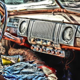 End of the Road by Michael Lopes - Transportation Automobiles ( old car, junkyard, junked car )