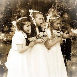 FairyTale Flower Girls by Ray Rosher - Wedding Other ( page boy, wedding, flowers, flower girls, flower girl )