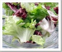 lettuce_salad_vegetable_240845_l