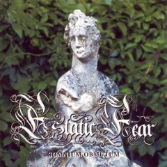 Estatic Fear 1996
