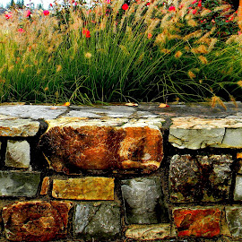 The little stone bench by Liz Hahn - Nature Up Close Rock & Stone