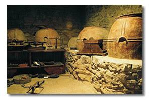ortodonico museo dell'olio