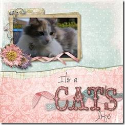 catslife080519