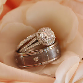 Rings & Roses by Chelsea Eigel - Wedding Details ( diamonds, wedding, roses, wedding rings )