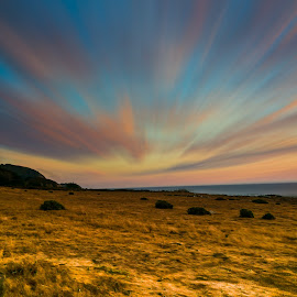 by Brock Slinger - Landscapes Prairies, Meadows & Fields ( national park, camping, big sur, fall, pinnacles, hiking )