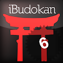 Aikido Advanced 2 icon