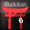 Aikido Advanced 2 icon