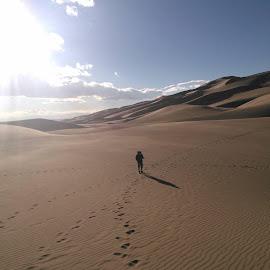 Lonely by Jimmy BL - Landscapes Deserts (  )