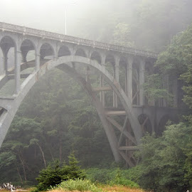 Cape Creek Bridge, Oregon by Waynette  Townsend - Buildings & Architecture Bridges & Suspended Structures ( florence, cape creek, arch, fog, creek, forest, bridge, gray, coast, mist, span )